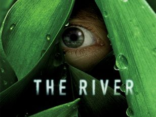 the-river-1525245695-width308-quality80.
